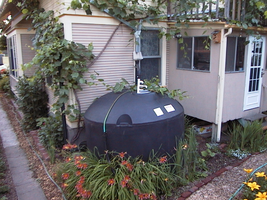 Ole Errson's: Rainwater Harvesting and Purification System